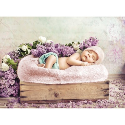 grafika-Puzzle - 2000 pieces - Konrad Bak: Baby sleeping in the Lilac