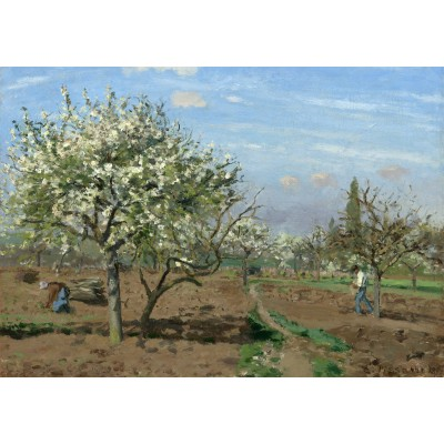 grafika-Puzzle - 1000 pieces - Camille Pissarro : Orchard in Bloom, Louveciennes, 1872