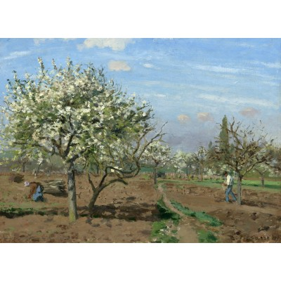 grafika-Puzzle - 300 pieces - Camille Pissarro : Orchard in Bloom, Louveciennes, 1872