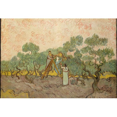 grafika-Puzzle - 12 pieces - XXL Pieces - Van Gogh: Women Picking Olives,1889