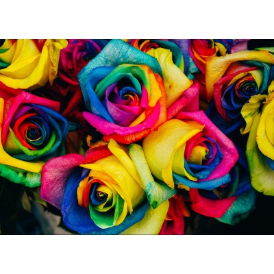 grafika-Puzzle - 24 pieces - Magnetic Pieces - Roses
