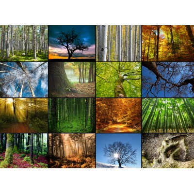 grafika-Puzzle - 80 pieces - Wooden Jigsaw Puzzle - Collage - Trees